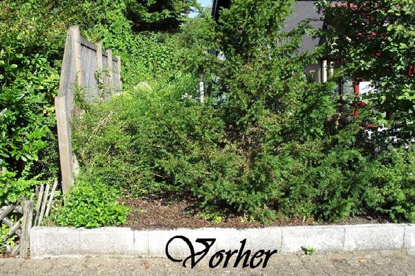 Referenzen Gartengestaltung Bilkin Dillingen